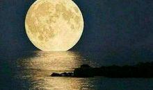 描写圆月的好段