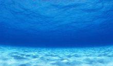 写大海的诗句