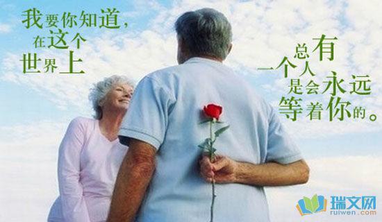关于爱情中英文版语句 0