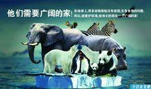 保护动物的广告语
