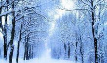 描写冬天的寒冷的句子
