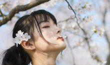 感受春天的短句 感受春天的气息的语录