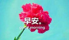 给女神早安的暖心句子 早安撩妹心语