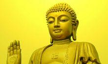 佛陀的启示禅语20句(一)