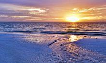 表达海边心情的句子