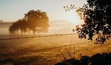 黎明是世上增值最快的一块土地
