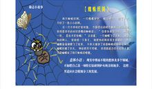 励志小故事:三个人与一只蜘蛛