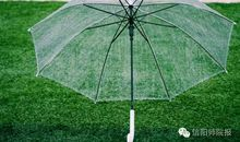 经典语录:晴天适合相见,雨天适合思念