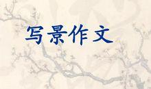 写景作文:四季香