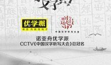 中国汉字听写大会观后感500字